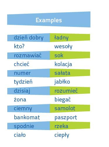 Fiszki PLUS Polish for foreigners - nauka polski