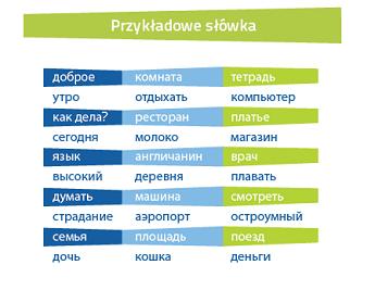 Rosyjski Fiszki PLUS 1000 najważniejszych słów dla początkujących - kurs języka rosyjskiego