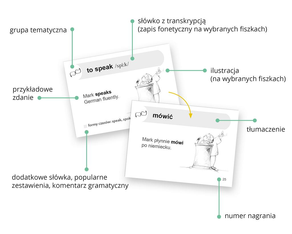 Fiszki PLUS - Ucz się słów i przykładowych zdań